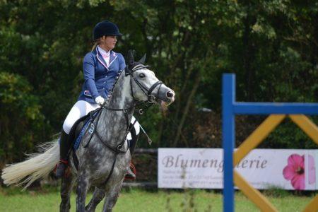 ABC jeździectwa konnego, czyli krótki poradnik sprzętu dla jeźdźca